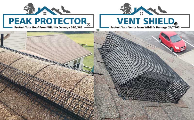 PEAK PROTECTOR AND VENT SHIELD PROTECTOR PHOTO