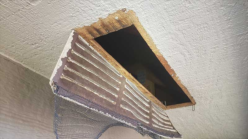 Eave Protector is used for raccoon protection
